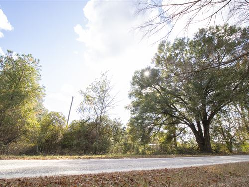 Beautiful Lot With 3 Bedroom Septic : Rose Hill : Sampson County : North Carolina