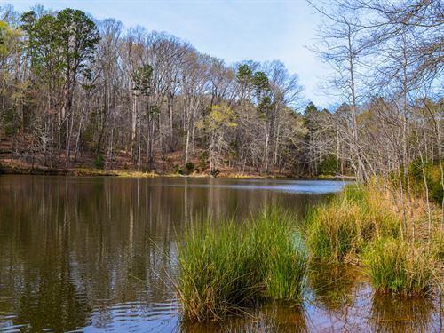 20+/- Acres With Large Private Pond : Woodruff : Spartanburg County : South Carolina