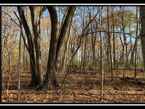 Hayden Run Woods Tract 11 : Hilliard : Franklin County : Ohio