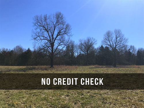$500 Down on 3 Acres at Lake : Cedarcreek : Taney County : Missouri