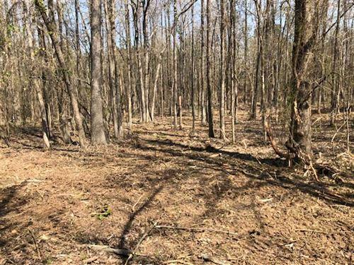 Wooded Building Lot : Jonesboro : Craighead County : Arkansas