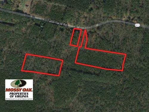 17.24 Acres of Hunting Land For Sa : Mathews : Virginia