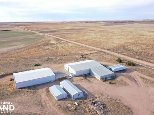 Yuma County Irrigated Farm For Sale : Yuma : Colorado