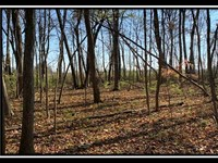 Tract 12 Weber Walker Farm : Hilliard : Franklin County : Ohio