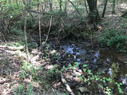 8.99 Acres Vineyard Creek Estates : Aubnrn : Lee County : Alabama