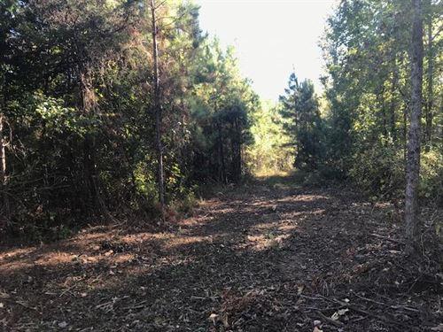 11.57 Acres Vineyard Creek Estates : Auburn : Lee County : Alabama
