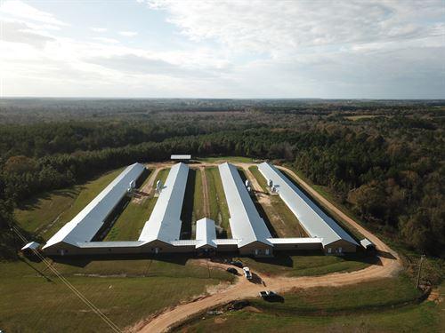 Triple B Farm, 4 House Breeder Farm : Opp : Covington County : Alabama