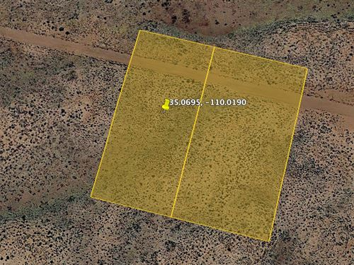 Brilliant Desert Property-2.5 Acres : Holbrook : Navajo County : Arizona