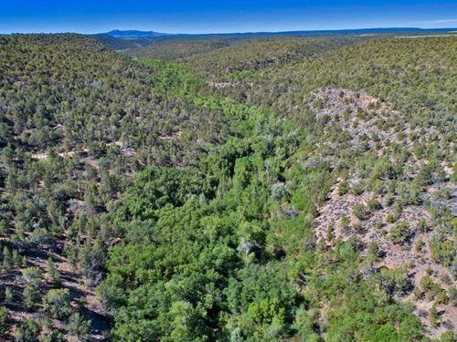 Hugo Land Ranch : Montrose : Colorado