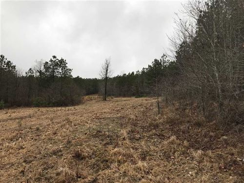 Beautiful 371 Acre Hunting Club : Mountain View : Stone County : Arkansas