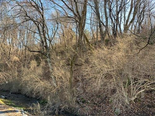 .7 Acres Wooded Recreational Land : Tazewell : Virginia