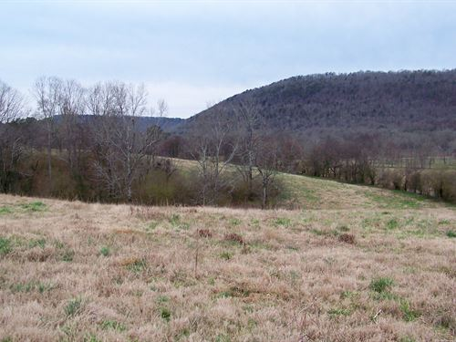 32 +/- Acres With Pond and View : Boaz : Etowah County : Alabama