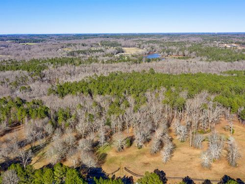 Robinson Creek : Watkinsville : Oconee County : Georgia