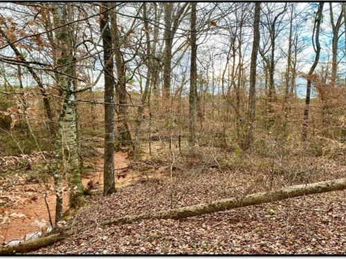 2 Acres In Lincoln County In Bogue : Bogue Chitto : Lincoln County : Mississippi