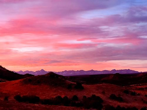 Country Property Views Every : Montrose : Colorado