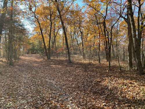 25 Wooded Acres : Huddleston : Bedford County : Virginia
