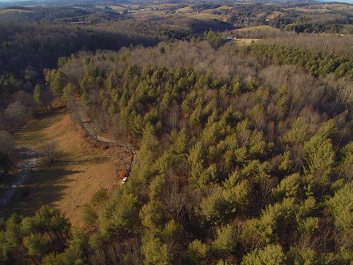 Wooded Tract Close to Galax : Galax : Carroll County : Virginia