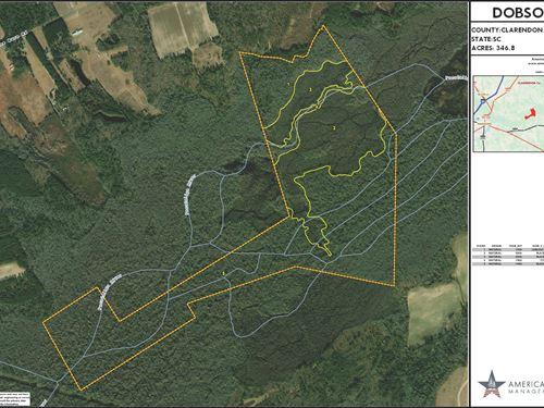 Dobson 1 & 2 : Manning : Clarendon County : South Carolina
