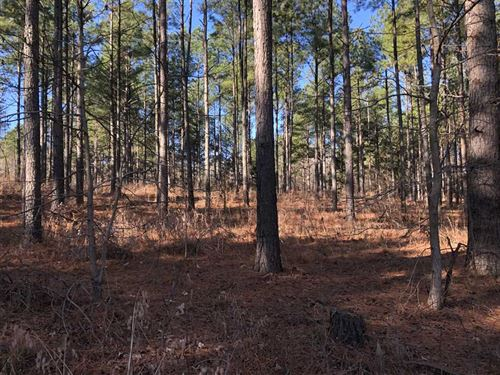 20-Acres of Fantastic Duck And Dee : Bald Knob : White County : Arkansas