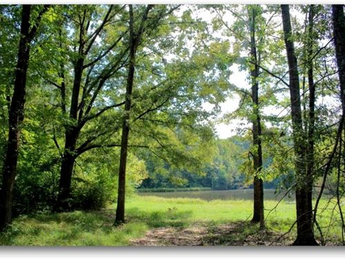 48.6 Acres In Hinds County In Jacks : Jackson : Hinds County : Mississippi