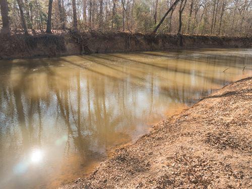 Highland Neches River, Duck Lake : Jacksonville : Cherokee County : Texas