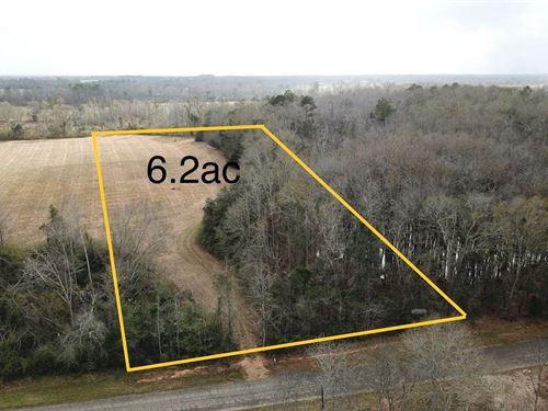 6.2 Acres Fletcher Smith Road : Cottonwood : Houston County : Alabama