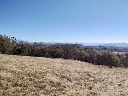 125 Acre Parcel For Sale : Pilot Hill : El Dorado County : California