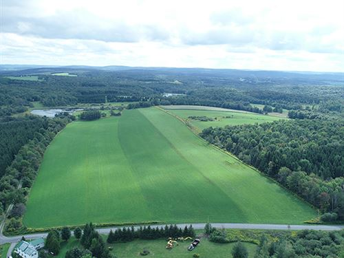 Cropland on Rolling Topography : Fenner : Madison County : New York