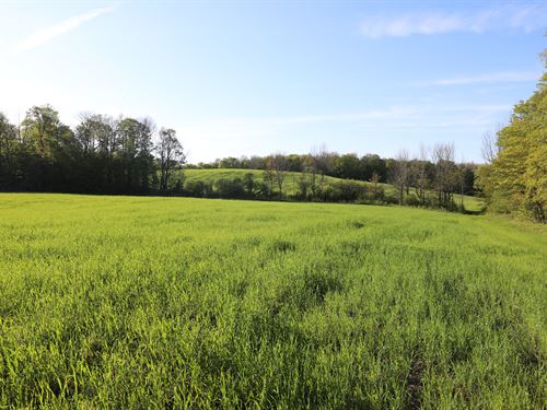 Country Acreage With Home & Equine : Franklin : Delaware County : New York