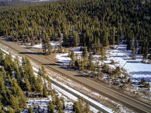 Enchanting 1.98 Timbered Acres : Bonanza : Klamath County : Oregon