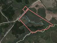 Turn Key Hunting Property : Gordon : Wilkinson County : Georgia
