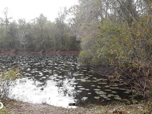 Okinawa Road Impoundment : Lake City : Columbia County : Florida