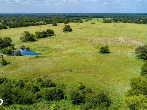 17.32 ac Near Canton, Pasture Land : Canton : Van Zandt County : Texas