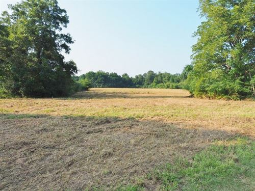 80 Acres Land For Sale Prentiss, Je : Prentiss : Jefferson County : Mississippi