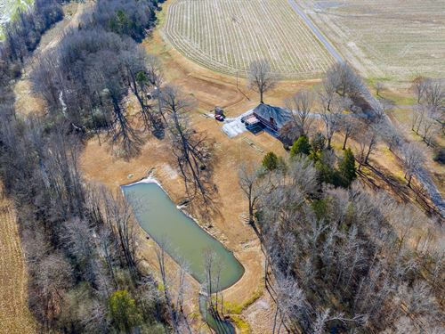 Country Estate, 2 Homes, Farm : Henderson : Chester County : Tennessee