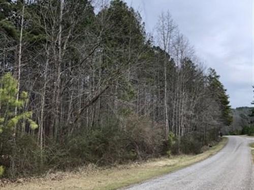 7.71 Acres in Rural Cleburne County : Heflin : Cleburne County : Alabama