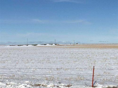 40 Acres, More or Less, Holt Count : O'neill : Holt County : Nebraska