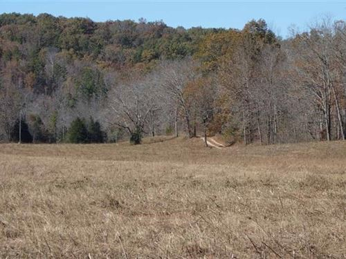 Southern MO Land, 68 Acres-Trophy : Ellington : Shannon County : Missouri