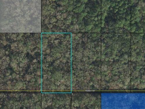 1.25 Acres in Flagler County, FL : Hastings : Flagler County : Florida