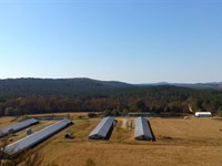 Broiler Farm With 4 Barns and 81 Ac : Plainview : Yell County : Arkansas