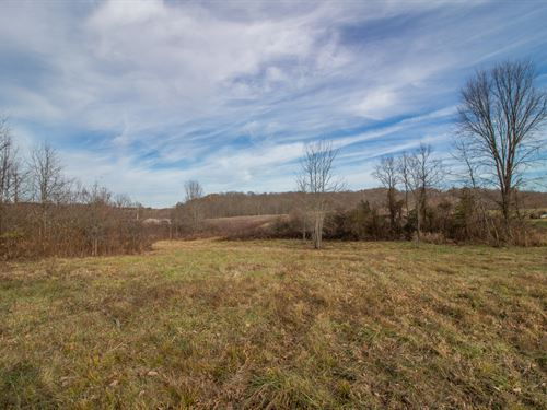 June Marshall Rd, 37 Acres : Jackson : Ohio