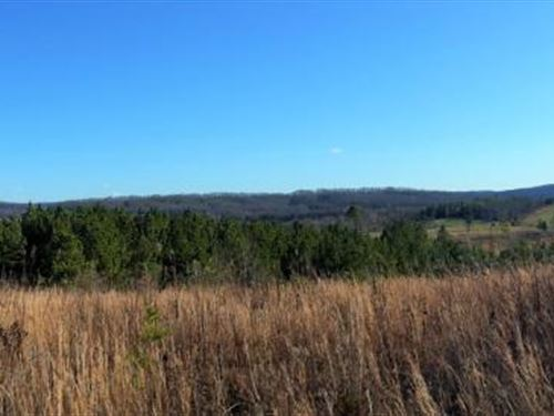 Mountain View Farm Near Sweetwater : Philadelphia : Roane County : Tennessee