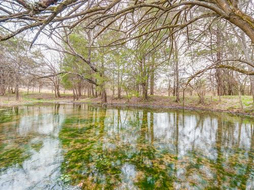181 Acre Hunting Property : Fayetteville : Lincoln County : Tennessee