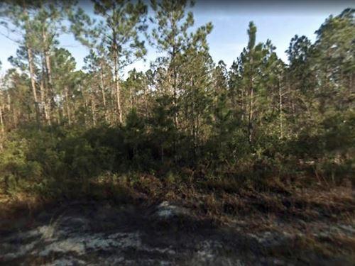 Corner Lot in Flagler Estates 95/Mo : Bunnell : Flagler County : Florida