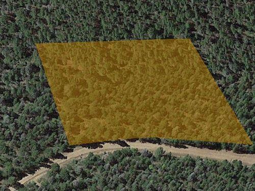 Colorado Mountain Land, 2.21 Acres : Fort Garland : Costilla County : Colorado