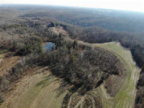 Deer Farm, Land For Sale 211 Acres : Moores Hill : Dearborn County : Indiana