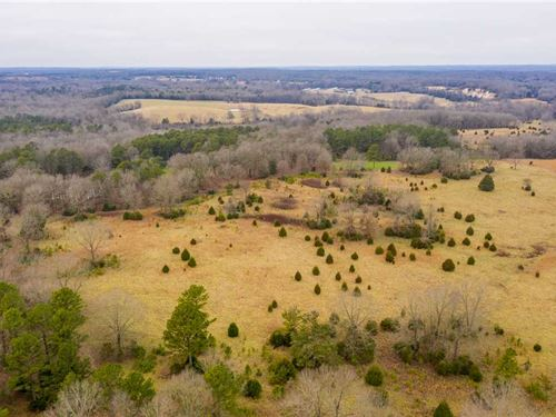 120 Acre, Small 2 Bedroom Cabi : Strawberry : Lawrence County : Arkansas