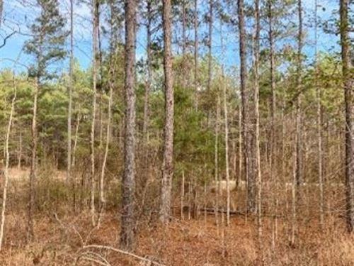 12.2 Acres In Choctaw County In Ack : Ackerman : Choctaw County : Mississippi