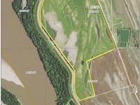 Southern Illinois 188 Acre Farm : McClure : Alexander County : Illinois
