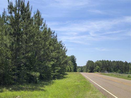 169 Ac Sh 63/Fm 2991 : Burkeville : Newton County : Texas
